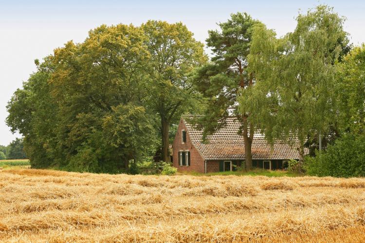VakantiehuisNederland - Limburg: Boshuub  [3]