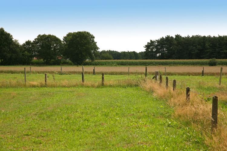 VakantiehuisNederland - Limburg: Boshuub  [29]