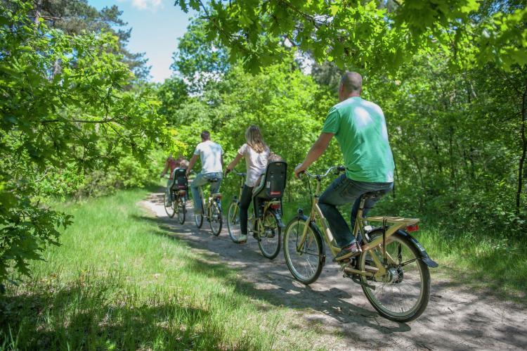VakantiehuisNederland - Noord-Brabant: Vakantiepark de Katjeskelder 4  [17]