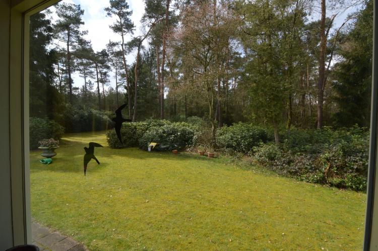 VakantiehuisNederland - Noord-Brabant: Ruischende Dennen  [27]