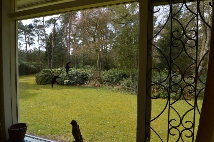 VakantiehuisNederland - Noord-Brabant: Ruischende Dennen  [4]
