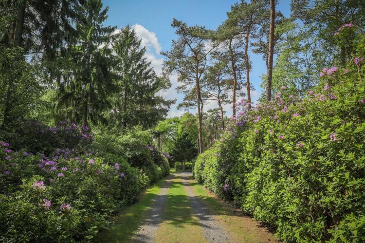 VakantiehuisNederland - Noord-Brabant: Ruischende Dennen  [26]