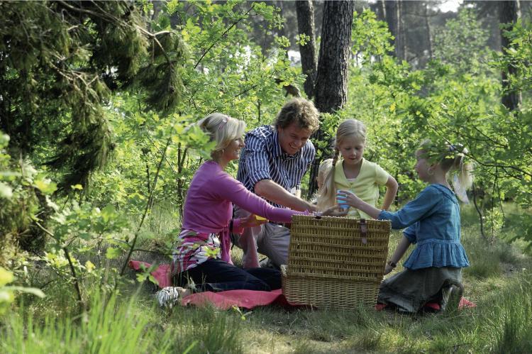 Holiday homeNetherlands - Limburg: Vakantiepark Weerterbergen 4  [31]