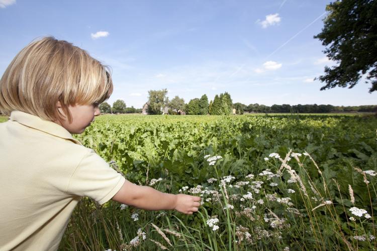 Holiday homeNetherlands - Drenthe: Vakantiepark Hunzedal 4  [24]