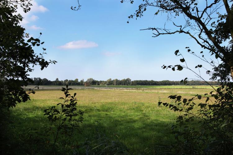 FerienhausNiederlande - Nord-Holland: Wildrijk  [28]