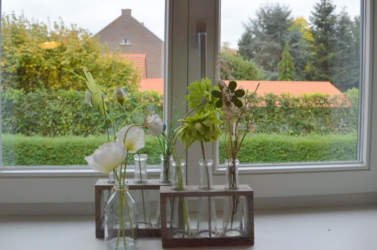 Holiday homeNetherlands - Limburg: Maasheuvel  [3]
