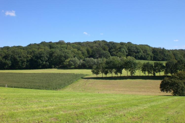 VakantiehuisNederland - Limburg: Hoeve A Gen Water  [20]