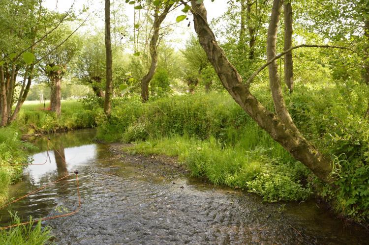 FerienhausNiederlande - Limburg: Hoeve A Gen Water  [34]