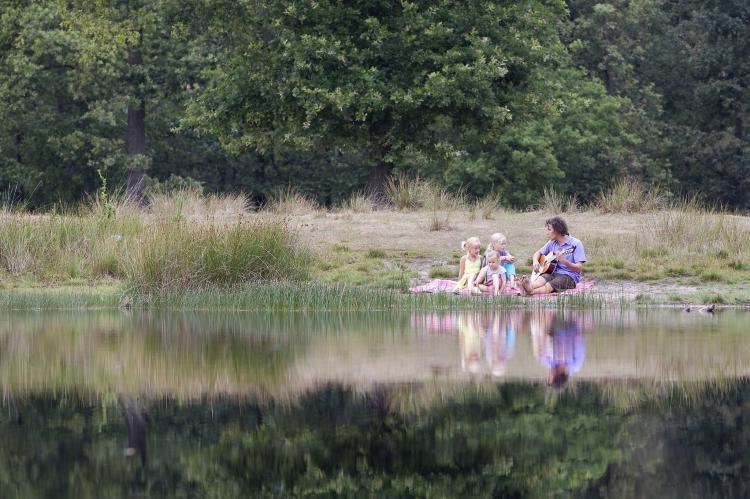 Holiday homeNetherlands - Friesland: Buitenplaats De Hildenberg 1  [17]