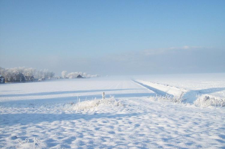 Holiday homeNetherlands - Friesland: Stelpshoeve  [36]