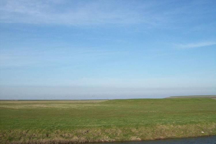Holiday homeNetherlands - Friesland: Stelpshoeve  [35]