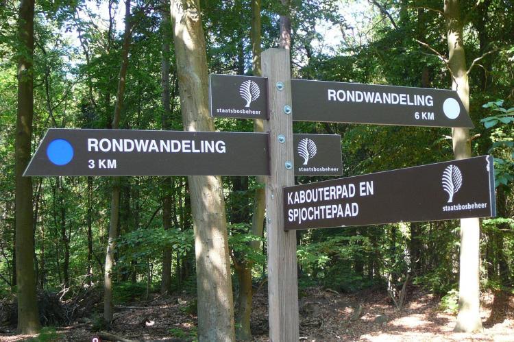 FerienhausNiederlande - Friesland: De Meerkoet  [22]