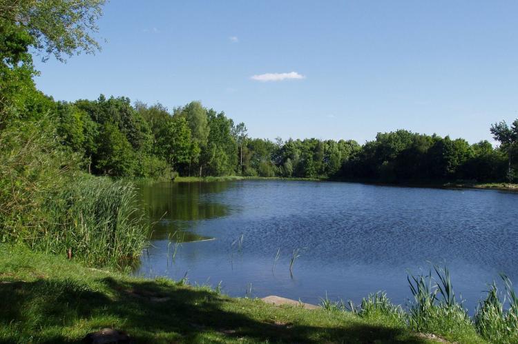 Holiday homeNetherlands - Noord-Brabant: Blandinushof  [19]