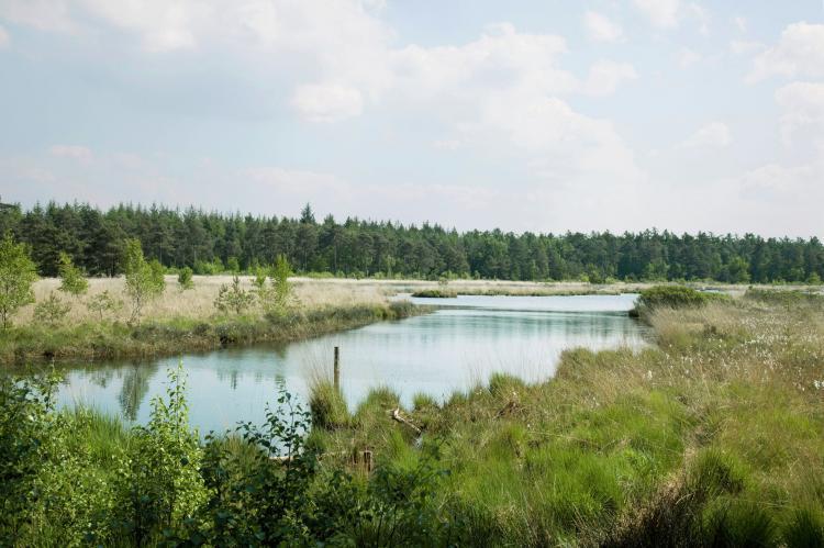VakantiehuisNederland - Friesland: Buitenplaats De Hildenberg 4  [24]