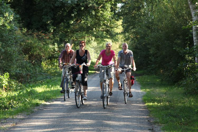 Holiday homeNetherlands - Drenthe: Villapark Akenveen 3  [15]