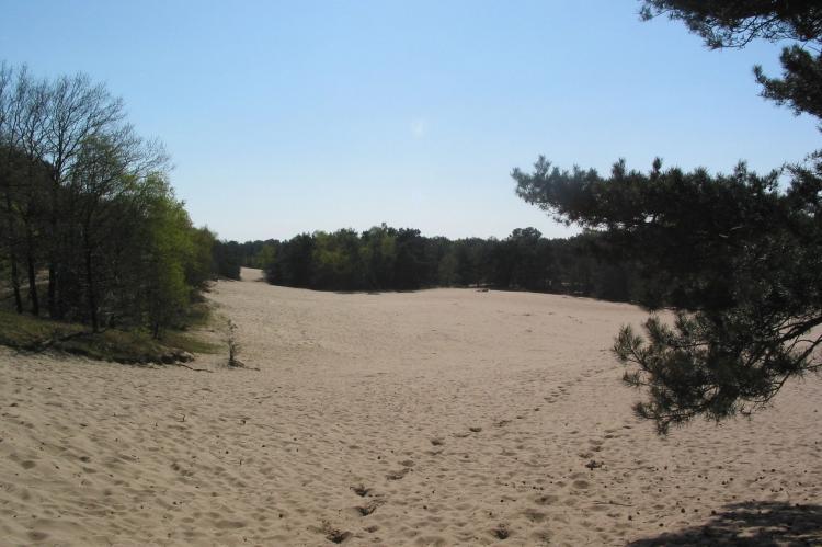 VakantiehuisNederland - Noord-Brabant: Vakantiepark Herperduin 7  [16]