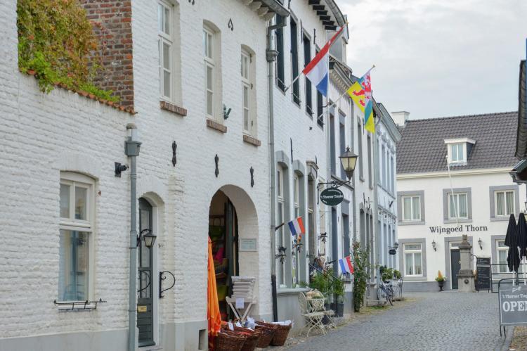 VakantiehuisNederland - Limburg: Maaspark Boschmolenplas - Havenblik  [29]