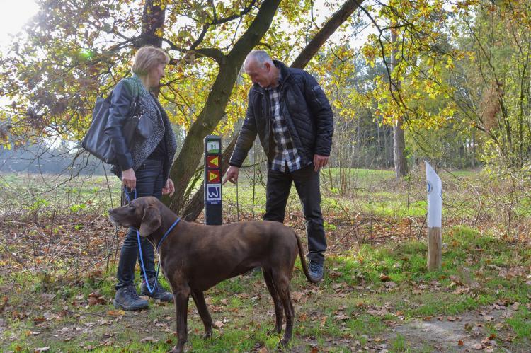 VakantiehuisNederland - Limburg: Maaspark Boschmolenplas - Havenblik  [28]