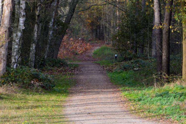 VakantiehuisNederland - Limburg: Maaspark Boschmolenplas - Waterblik  [26]