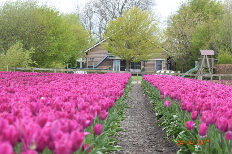 VakantiehuisNederland - Noord-Holland: Silence II  [24]