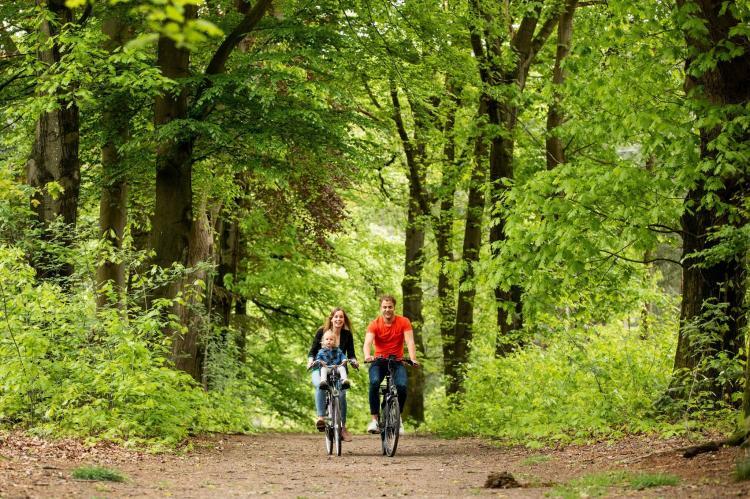 Holiday homeNetherlands - Gelderland: Landgoed De Scheleberg 5  [27]