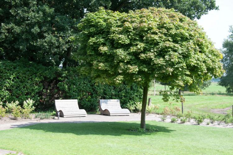 FerienhausNiederlande - Drenthe: Landhuis de Linde  [27]