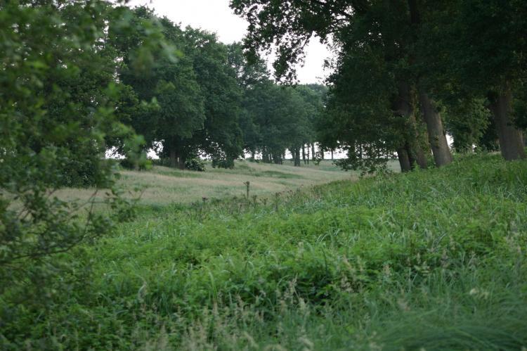 VakantiehuisNederland - Overijssel: Chaletpark Kuiperberg 8  [22]