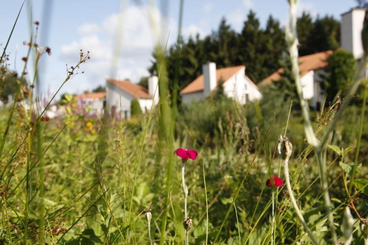 VakantiehuisNederland - Limburg: Resort Arcen 8  [29]