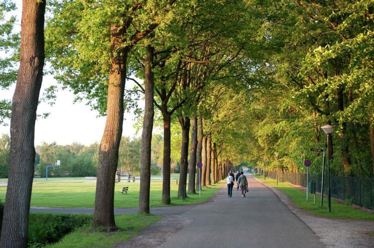 Holiday homeNetherlands - Limburg: Résidence Klein Vink 1  [30]