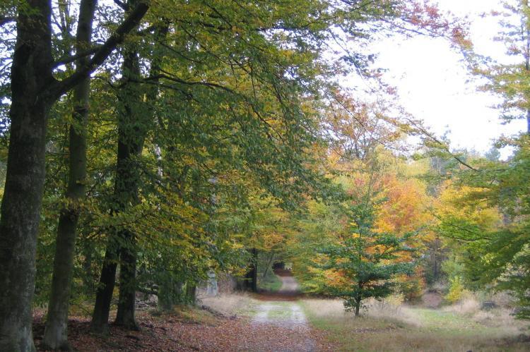 Holiday homeNetherlands - Gelderland: Bungalowpark Hoenderloo 3  [23]