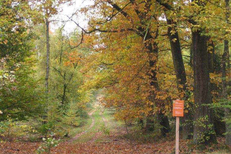 Holiday homeNetherlands - Gelderland: Bungalowpark Hoenderloo 3  [21]