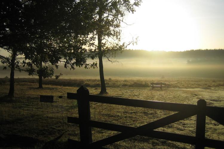 Holiday homeNetherlands - Gelderland: Bungalowpark Hoenderloo 3  [20]