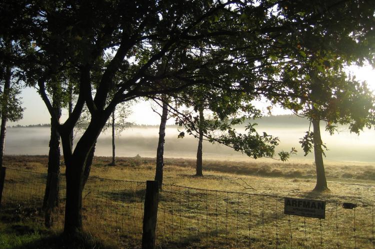 Holiday homeNetherlands - Gelderland: Bungalowpark Hoenderloo 3  [22]
