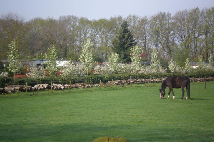 VakantiehuisNederland - Utrecht: Vakantiepark de Tabaksschuur 1  [22]