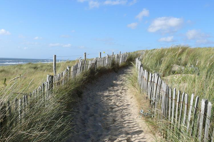 VakantiehuisNederland - Noord-Holland: De ZeeParel Sea Crab  [28]