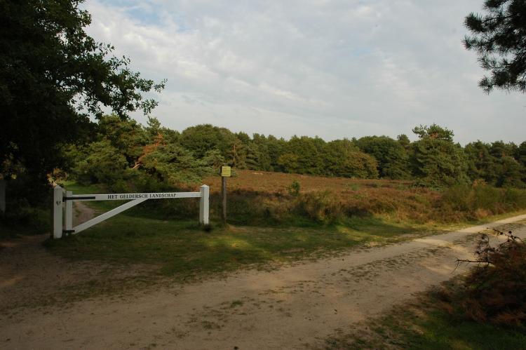 VakantiehuisNederland - Gelderland: Landgoed De IJsvogel 5  [9]