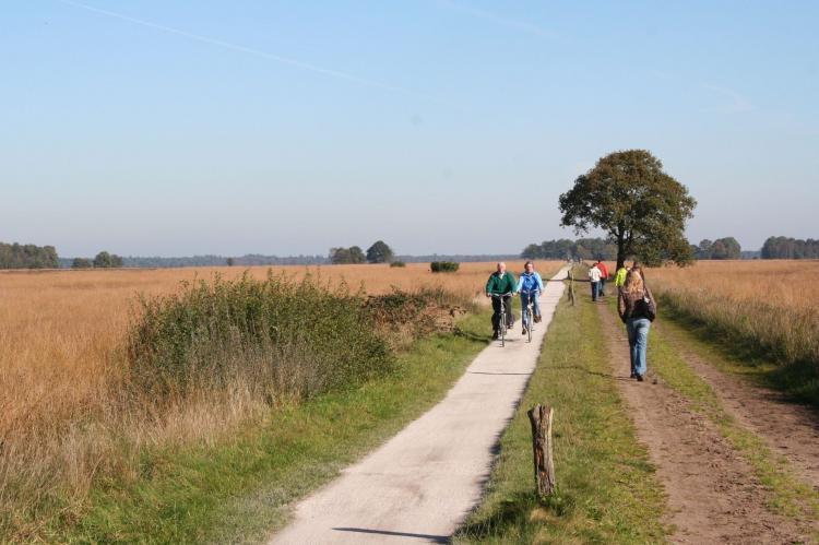 VakantiehuisNederland - Drenthe: Buitenplaats De Marke van Ruinen 2  [17]