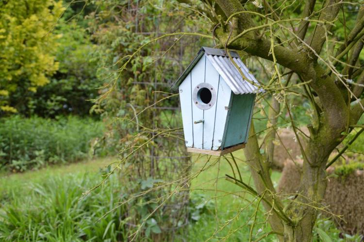 VakantiehuisNederland - Noord-Brabant: Vier Vogelenzang  [30]