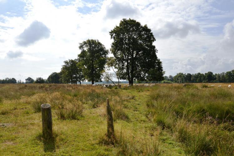 VakantiehuisNederland - Drenthe: Wapse  [35]