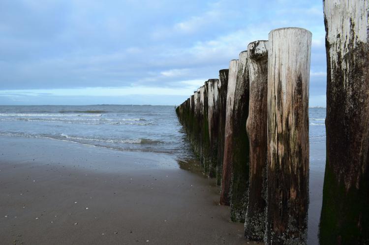 Holiday homeNetherlands - Zealand: De Zeeschelp  [34]