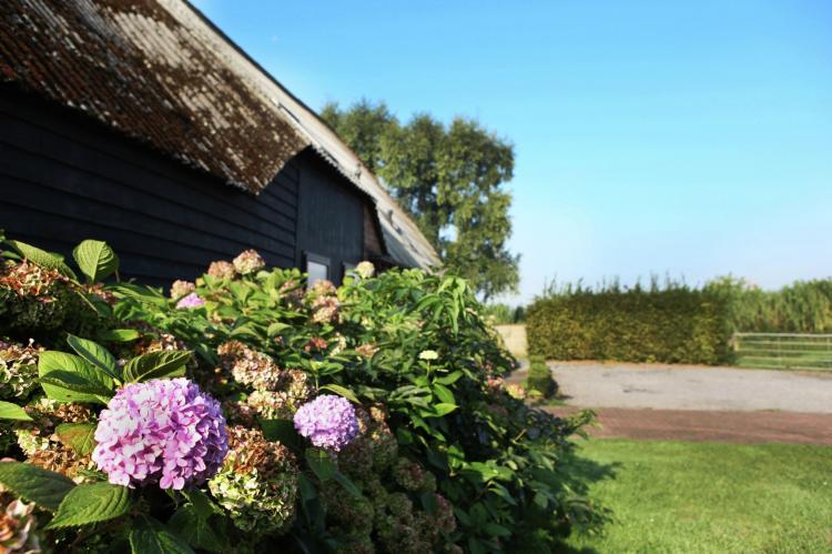 VakantiehuisNederland - Zeeland: Appartement De Biezenpolder  [33]