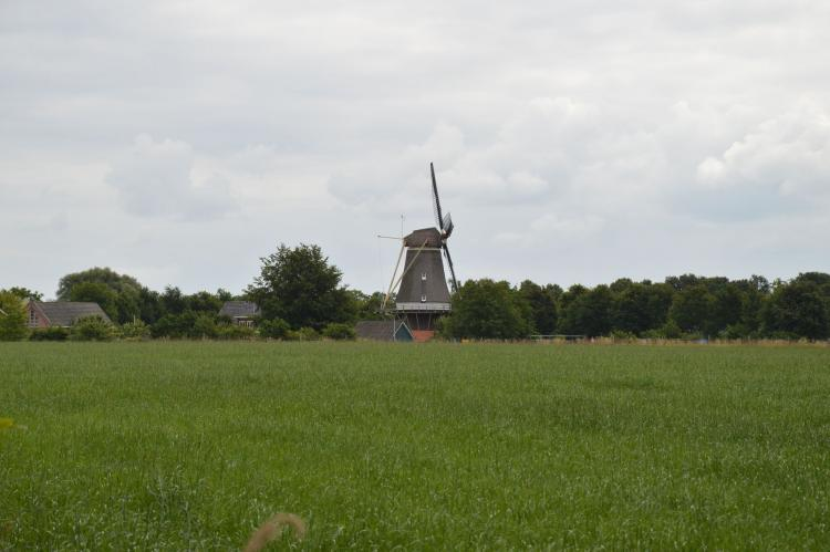 Holiday homeNetherlands - Gelderland: Broodkast  [15]