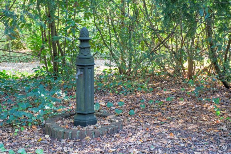 Holiday homeNetherlands - Drenthe: The Forest Cottage  [27]
