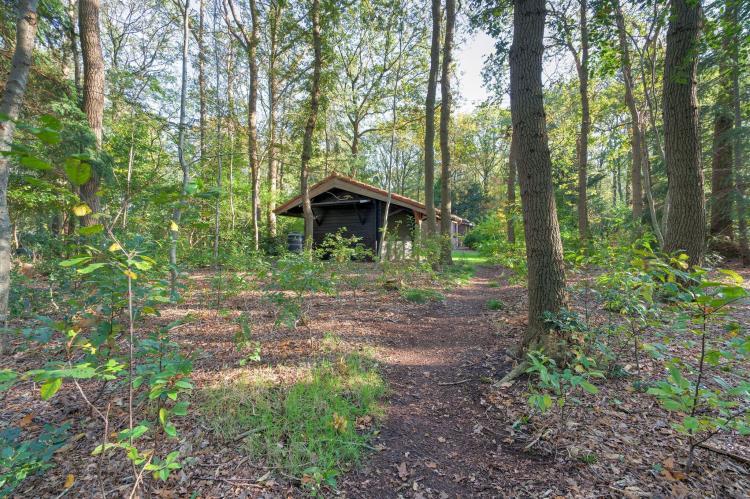 Holiday homeNetherlands - Drenthe: The Forest Cottage  [24]