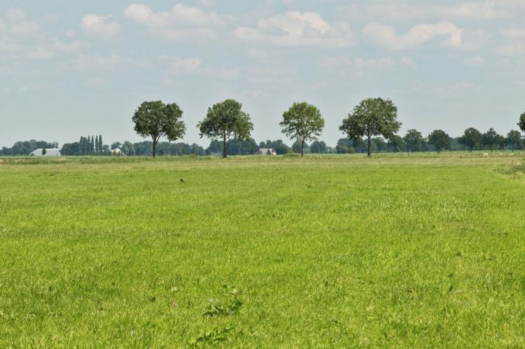 Holiday homeNetherlands - Gelderland: Chalet Veluwemeer  [31]