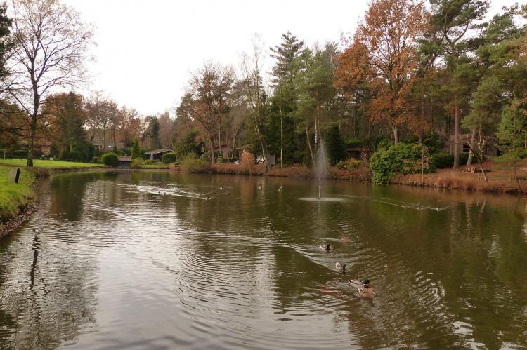 VakantiehuisNederland - Noord-Brabant: Parc de Kievit 4  [22]