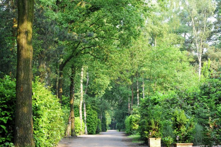 VakantiehuisNederland - Noord-Brabant: Parc de Kievit 4  [25]