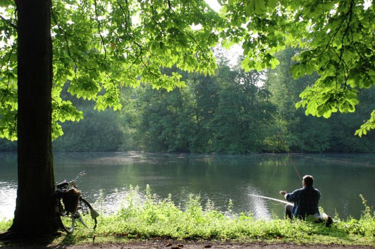 VakantiehuisNederland - Limburg: Parc de Witte Vennen 3  [32]