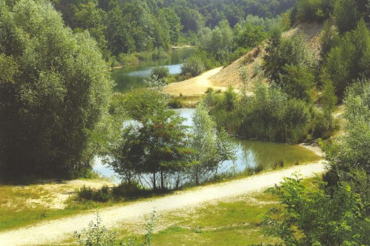 VakantiehuisNederland - Limburg: Parc de Witte Vennen 3  [33]