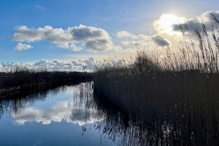 Holiday homeNetherlands - Overijssel: Chaletpark Kroondomein Giethoorn 5  [19]